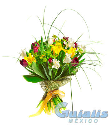 Flores Naturales en Ixtapaluca