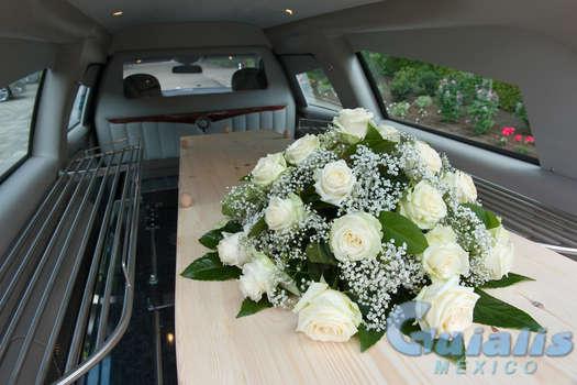 Funeraria en Cosalá
