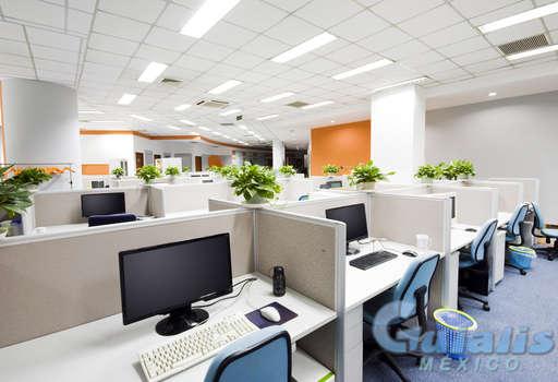 Oficinas en Distrito Federal (Estado)