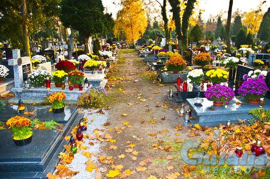 Cementerios en La Magdalena Contreras