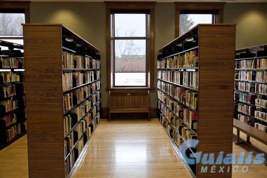 Bibliotecas en Iztacalco
