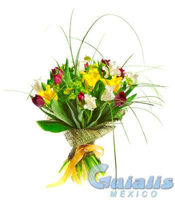 Flores Naturales en Veracruz de Ignacio de la Llave (Estado)