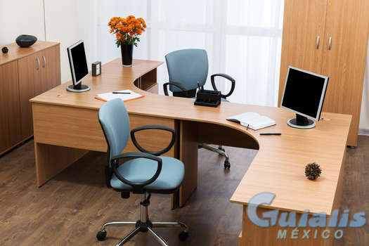 Muebles de Oficina en Xicoténcatl