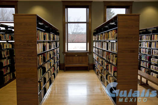 Bibliotecas en Gustavo A Madero